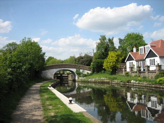 ricky1 - canal